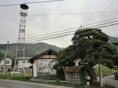 2012.04.30.hitakihongou8.JPG
