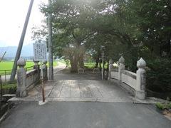 2012.07.27.uzume2.JPG