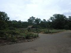 2012.08.14.1.JPG