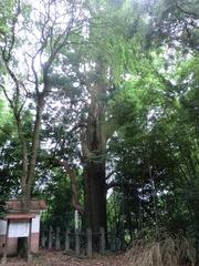 2012.08.14.kawabe13.JPG
