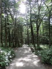 2012.08.22.okumiya11.JPG
