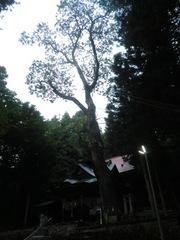 2012.09.22.nagaoka7.JPG