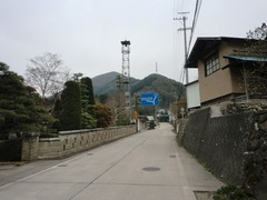 20120430maki8.JPG