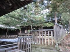 2013.01.06.miwajinja12.JPG