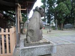 2013.01.14.arei15.JPG