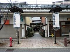 2013.02.24.yamazakura1.JPG