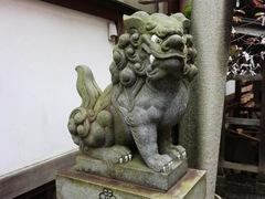 2013.02.24.yamazakura3.JPG