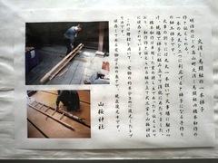 2013.02.24.yamazakura7.JPG