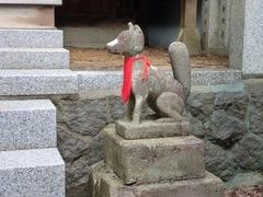 2013.02.25.sakurayama14.JPG