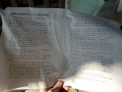 2013.02.26.yanosawa7.JPG