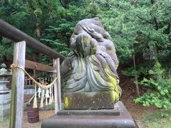 2013.03.10.namiyanagi8.JPG