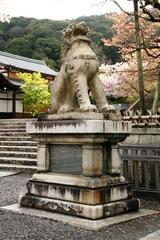 2013.04.06.kiyomizu4.JPG