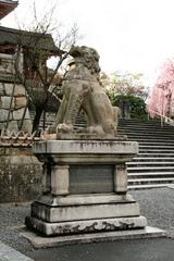 2013.04.06.kiyomizu5.JPG