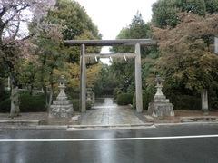 2013.04.06.konoshima2.JPG