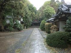 2013.04.06.konoshima3.JPG
