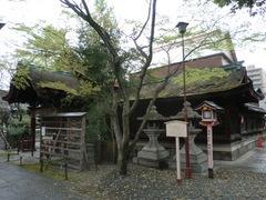 2013.04.06.shimomitama6.JPG