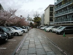2013.04.06.yasuikonpira4.JPG
