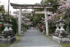 2013.04.07.miyakehachiman1.JPG