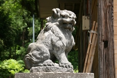 2013.06.09.morita4.JPG