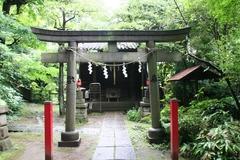 2013.06.16.hikawa16.JPG