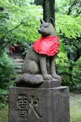 2013.06.16.hikawa17.JPG