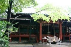 2013.06.16.hikawa49.JPG