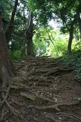 2013.08.13.ichikisima3.JPG