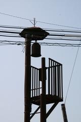2013.08.14.ipponnyanagi4.JPG