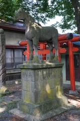 2013.08.14.kasiwagihachimangu12.JPG