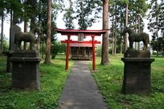 2013.08.14.mishima23.JPG