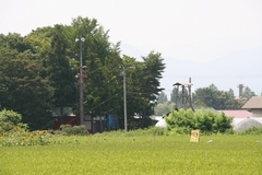 2013.08.14.muramoto7.JPG