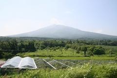 2013.08.15.higashiiwaki9.JPG