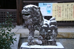 2013.12.30.tsuge14.JPG
