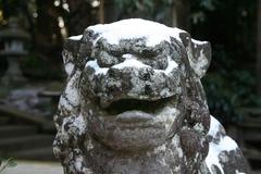 2013.12.30.tsuge16.JPG