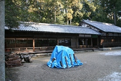 2013.12.30.tsuge7.JPG