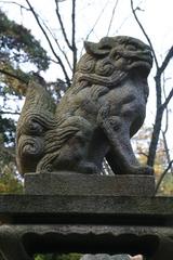 2013.12.31.idakiso9.JPG