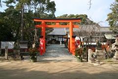 2013.12.31.tamatsushima1.JPG