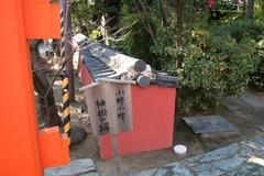 2013.12.31.tamatsushima17.JPG