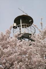 2014.04.19.iwahara1.JPG