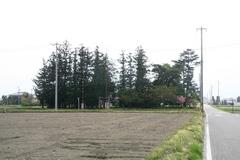 2014.05.03.kamishimo5.JPG