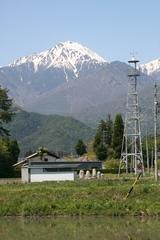 2014.05.11.oogimachi2.JPG