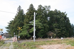 2014.10.12.aoshima2.JPG
