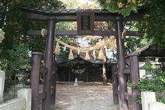 2014.10.12.byakko13.JPG