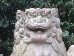 2014.12.12.ooshiro30.JPG