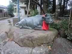 2014.12.12.ooshiro6.JPG