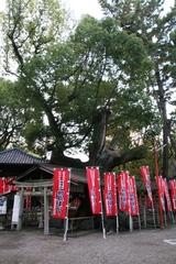 2014.12.13.sumiyoshi47.JPG