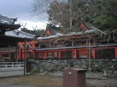 2015.01.01.niukanshoubu1.JPG