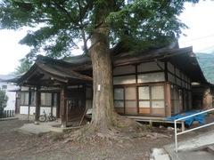 20150616tsumashina18.JPG