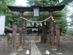 20150616tsumashina2.JPG
