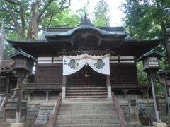 20150616tsumashina3.JPG